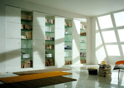 Library with glass shelves
