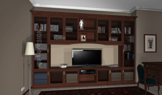 Custom Cabinet for library
